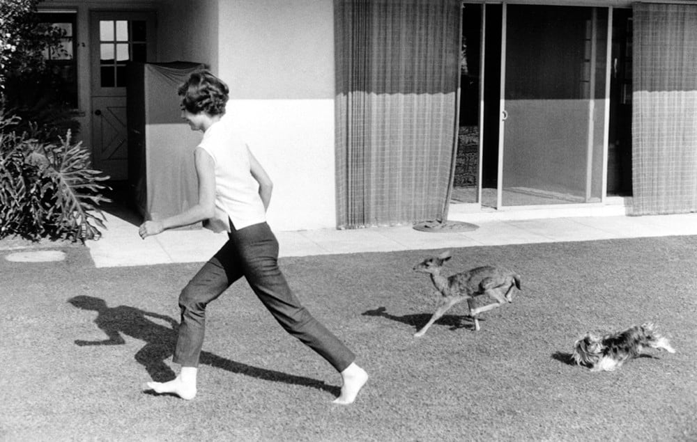 Audrey Hepburn running with deer