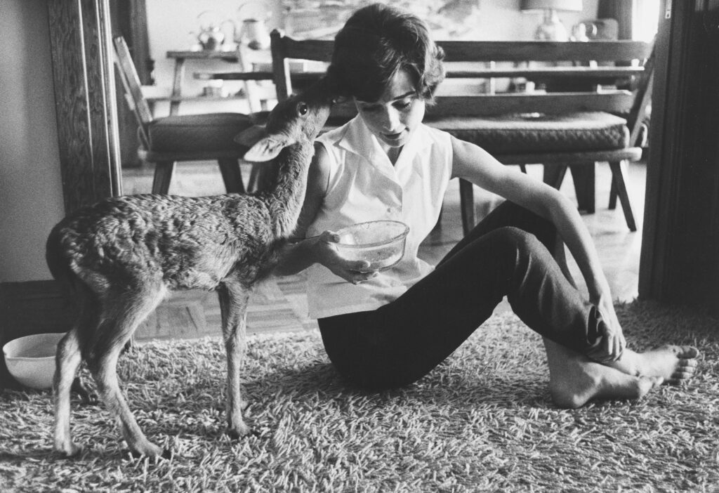 Audrey Hepburn and The Adorable Little Deer She Adopted