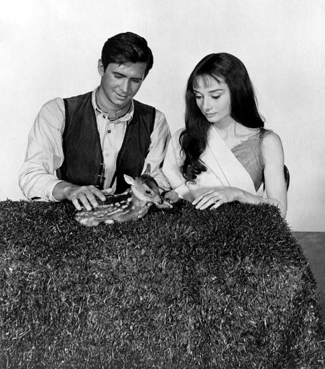 Audrey Hepburn and Anthony Perkins in Green Mansions (1959)