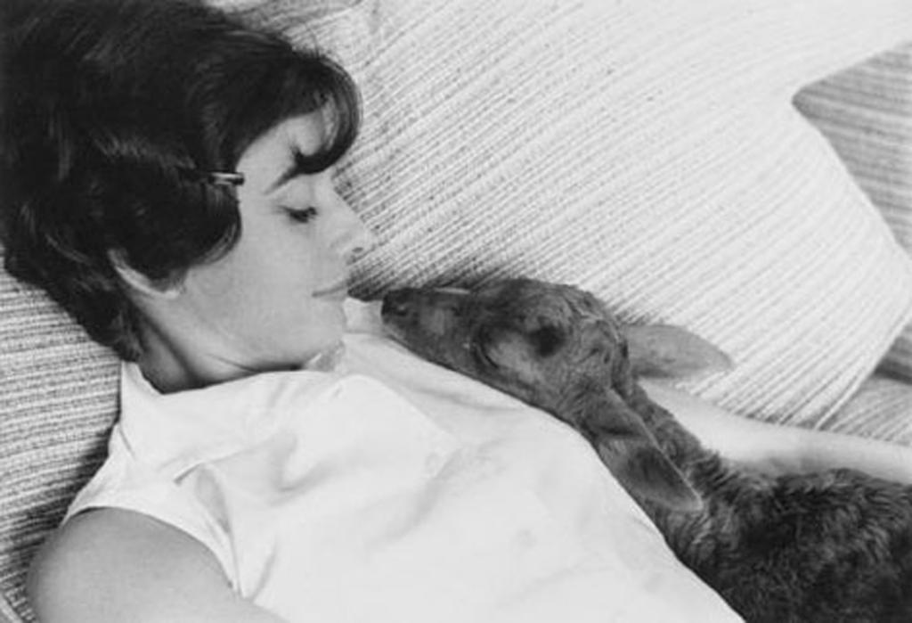 Audrey Hepburn kissing her baby deer