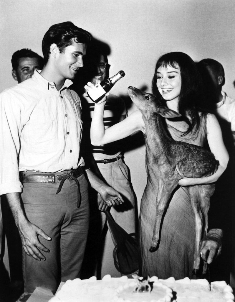 No one could throw a deer birthday party like Audrey Hepburn