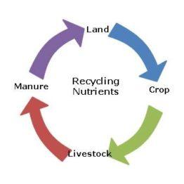 Earthlinc Environmental Solutions