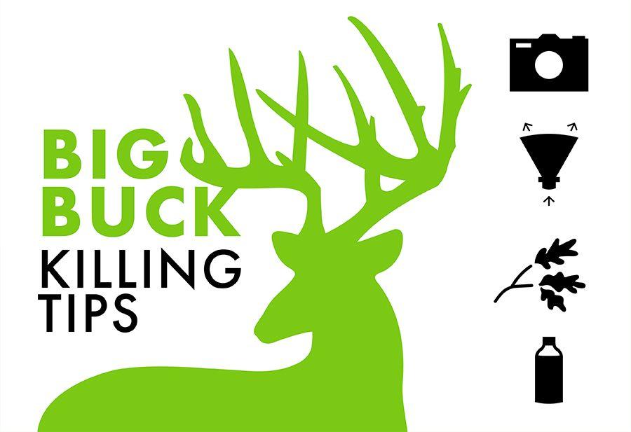 Big Buck Killing Tips