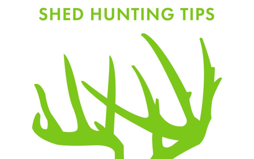 Josh Bowmar's Shed Hunting Tips