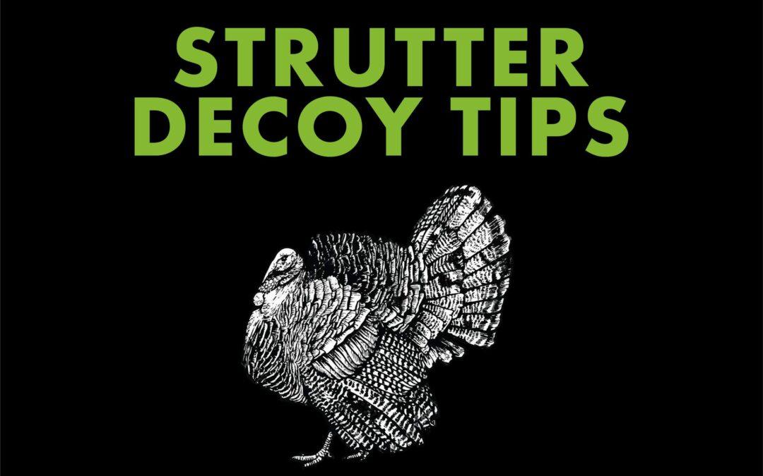 Josh Bowmar's Strutter Decoy Tips
