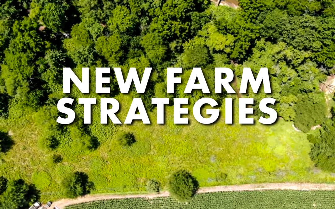 Josh Bowmar's New Farm Strategies