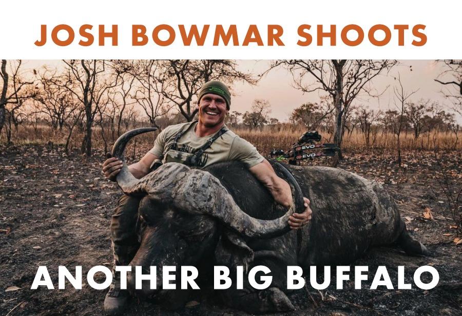 Josh Bowmar Shoots Another Big Buffalo