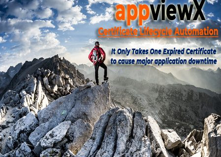 Mountaineer on the summit of a peak