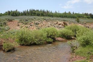 Bear River Meadows