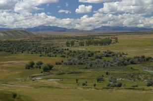 Cottonwood Creek Ranch