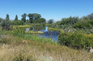 Prairie Creek Ranch