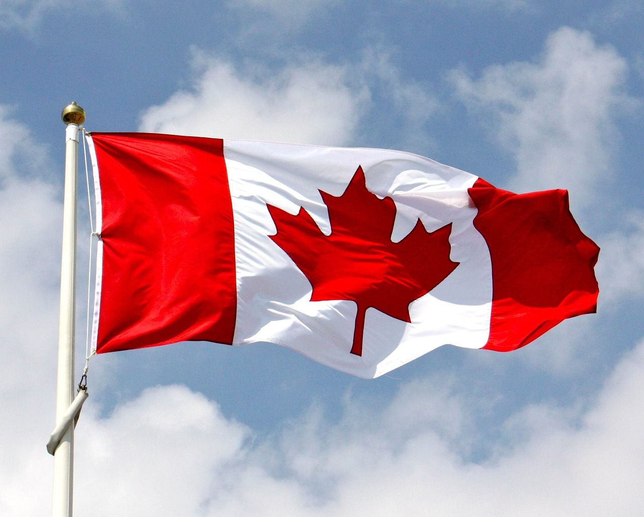 The Canadian Charitable Sector Needs Our Help