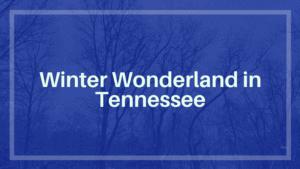 Winter Wonderland in Tennessee