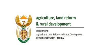 Photo of Applications Open for The Dept of Agriculture & Land Reform Internship Programme (250 Posts)