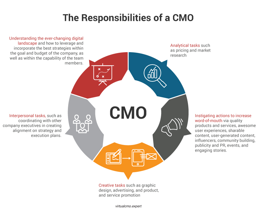 The Responsibilities Of A CMO