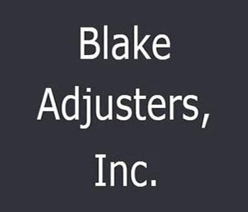 Blake-350-300