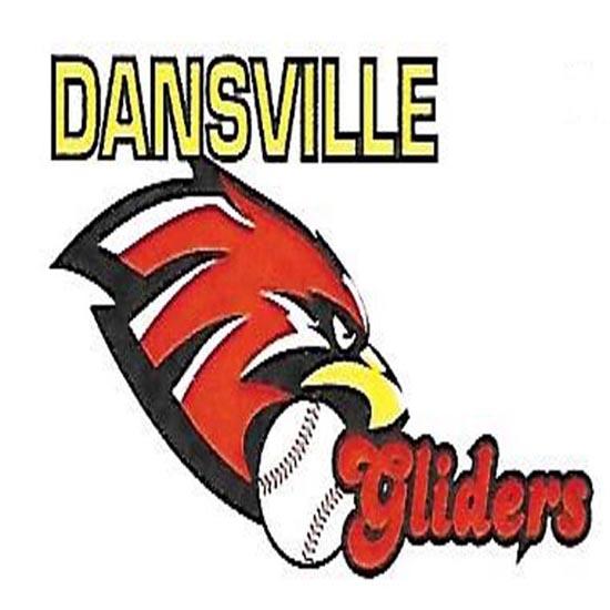 Dansville_Baseball_Logo(550×550)