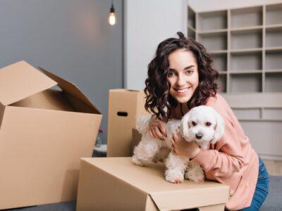 Alquilar con mascotas: guía para el propietario