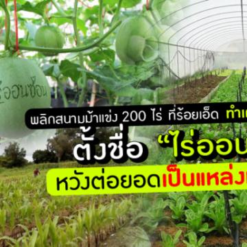 """พลิกสนามม้าแข่ง 200 ไร่ ที่ร้อยเอ็ด ทำเกษตรอินทรีย์ ธุรกิจสะอาด ตั้งชื่อ """"ไร่ออนซอน"""" หวังต่อยอดเป็นแหล่งท่องเที่ยว"""