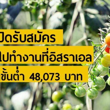 กกจ. เปิดรับสมัคร คนไทยไปทำงานภาคเกษตรที่อิสราเอล