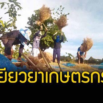 """เกษตรกรได้เฮ ! """"เฉลิมชัย"""" สั่งเตรียมพร้อมเยียวยาเกษตรกรกว่า 7 ล้านราย"""