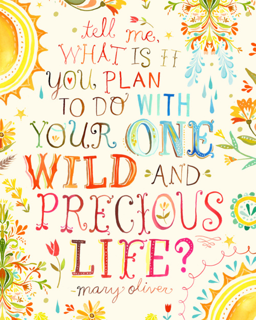 what is it you plan to do with your one wild and precious life, mary oliver quote, finding my life purpose, what is my purpose, what is the purpose of life, cute quotes, life quotes, mary oliver quotes, true meaning of life, do what you love, reaching true happiness