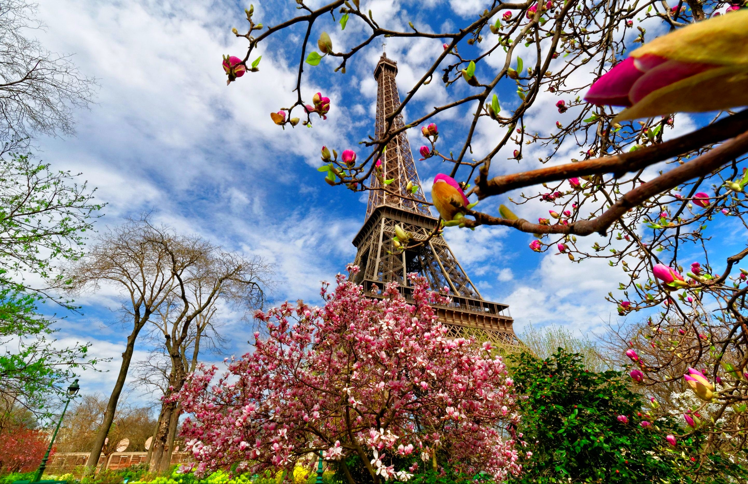 Spring vacation ideas, where to travel in Spring
