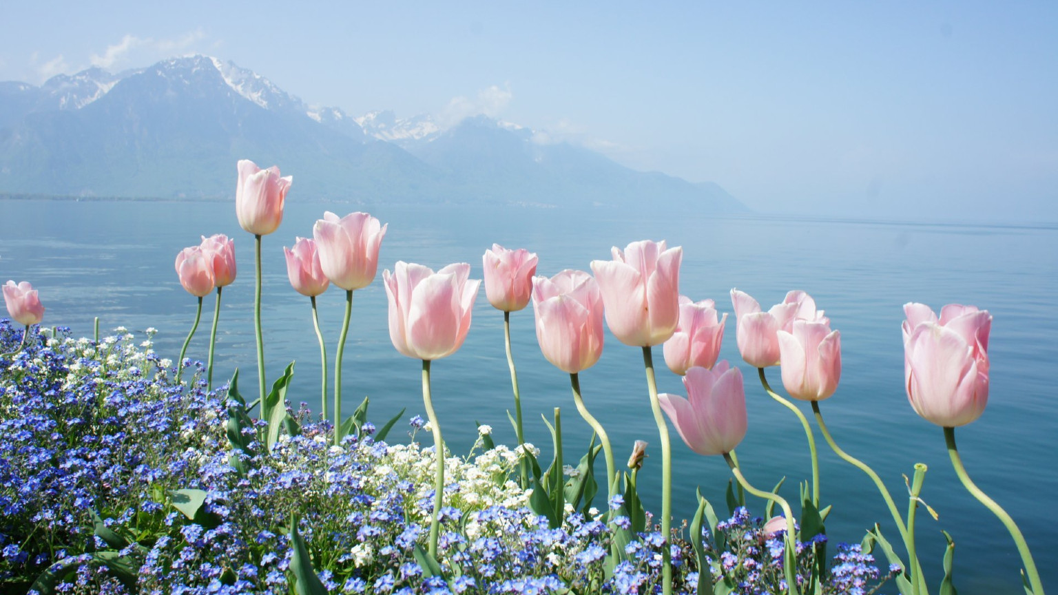 Best Spring vacations, places to visit in Spring