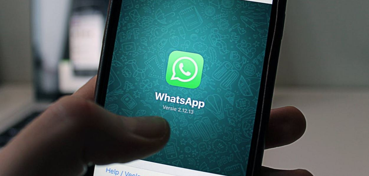 Now, share any type of file on WhatsApp