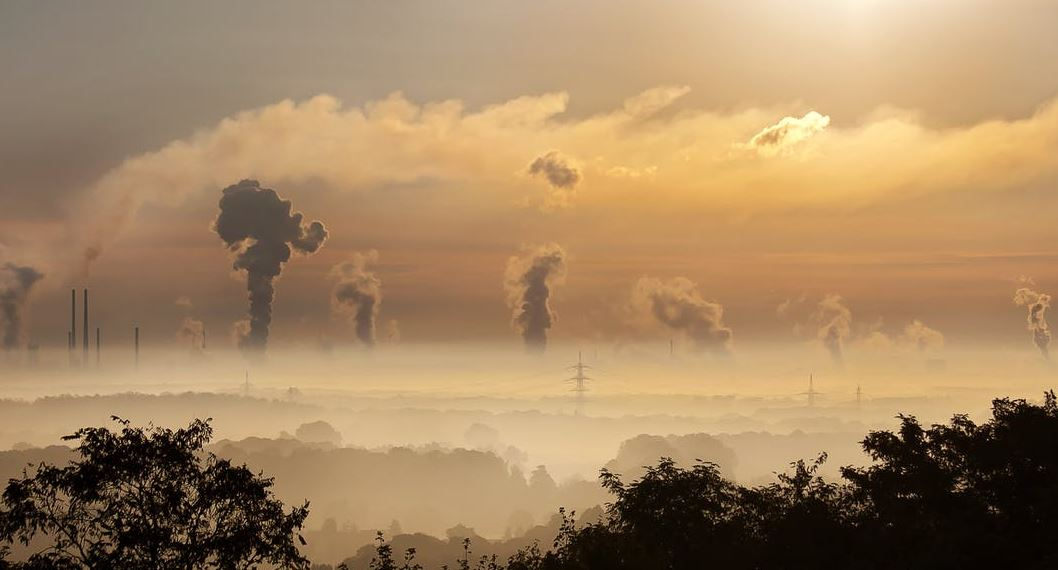 Consistent rise in CO2 emissions contributing to protein deficiency: Study