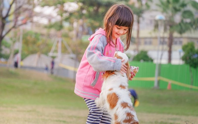 Study debunks belief that having pets will positively affect children's health