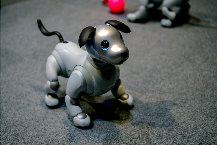 Sony Teaches Old Dog New Tricks With Relaunch Of Robotic Pup Aibo