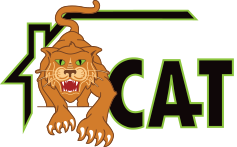 Copper Cat