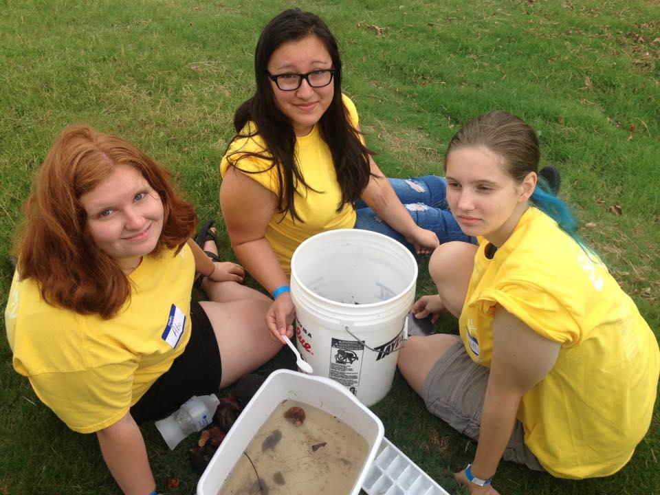 Secchi Day Girl Scouts