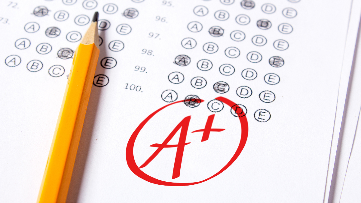 Everything You Need To Know About Final Grades
