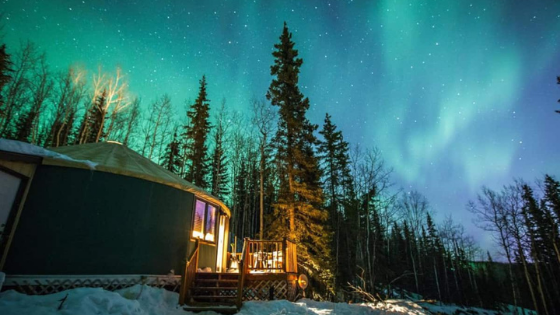 Would You Stay in These Airbnb Unique Stays?