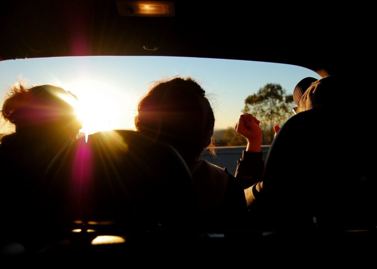 Find Out What Type of Passenger You Are