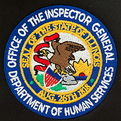 State of Illinois Inspector General
