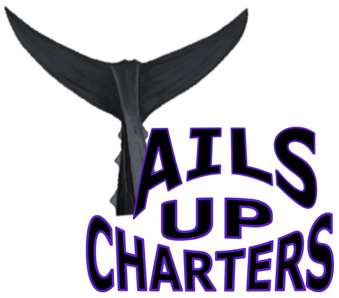 TailsUpCharters.com