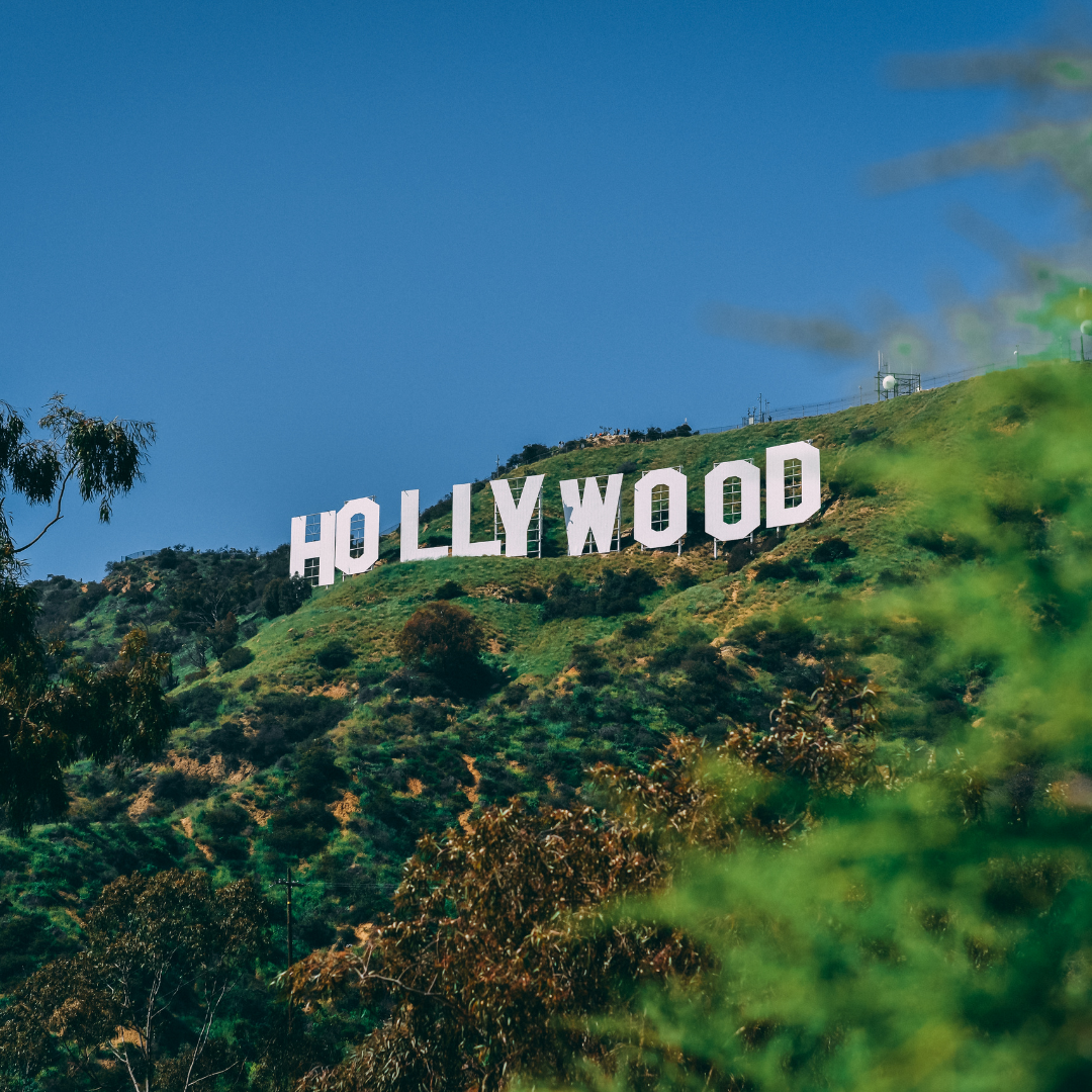 *Diversity In Hollywood with Naiara Irizarry