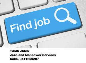 Job Consultancy Placement Agency Aligarh