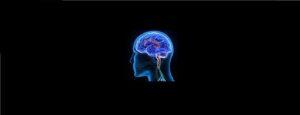 Neurologists in New York Best Neurosurgeons in NYC New York USA