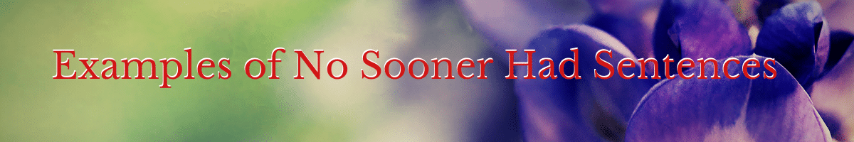 Examples of No Sooner Had Sentences How to
