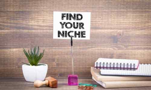 Niche Selection Make More Money
