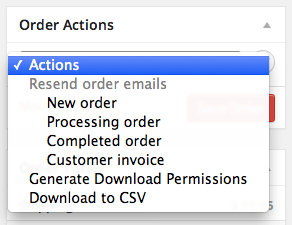 """WooCommerce Order / Customer CSV Export Exporting from """"Edit Order"""" Screen"""