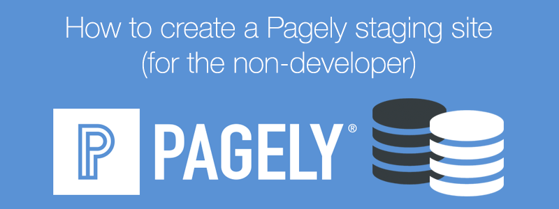 Pagely staging site