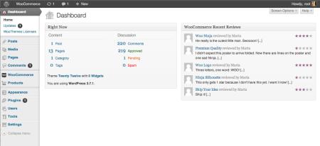 WordPress 3.7 Dashboard
