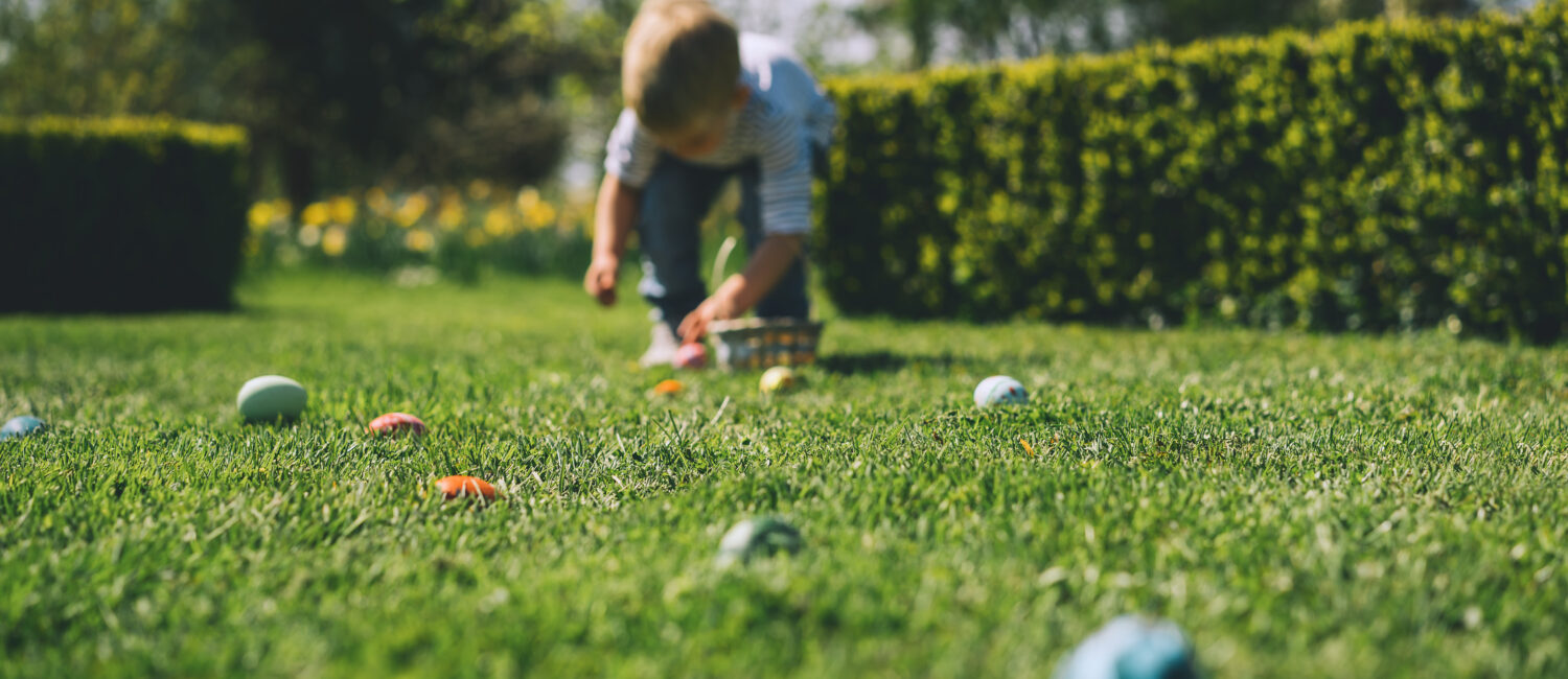 Blurred background. Little children gathering painted decoration eggs in spring park. Kids hunt for egg outdoors. Festive family traditional play game on Easter. Colorful Easter eggs in basket.