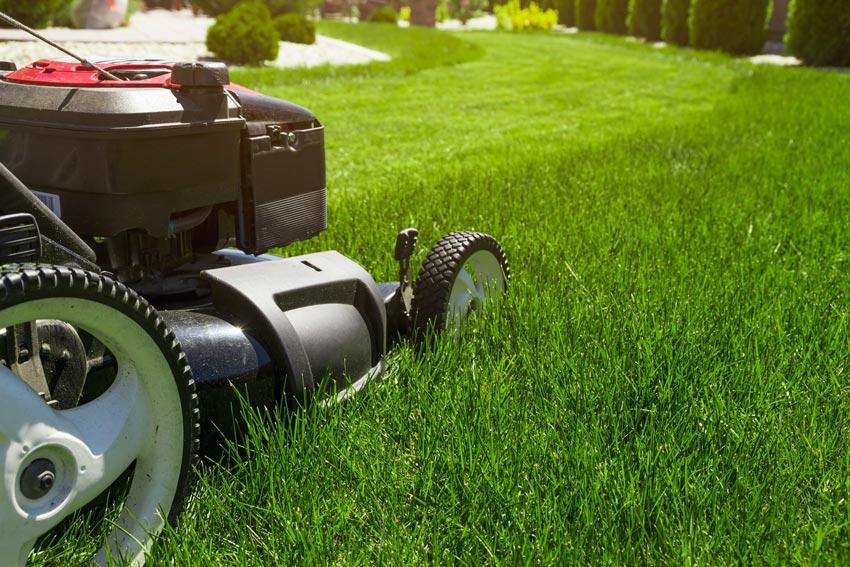 lawn-mower-1