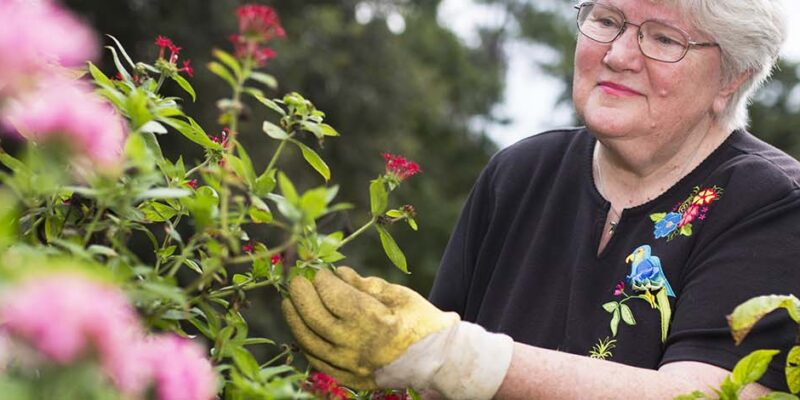 Taking Care of Your Winter Landscaping